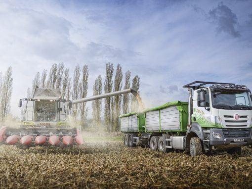 Lauksaimniecība